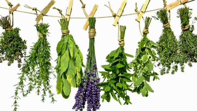 Ways to Use Herbs