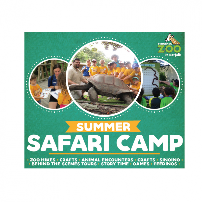 The Virginia Zoo - Summer Safari Camp