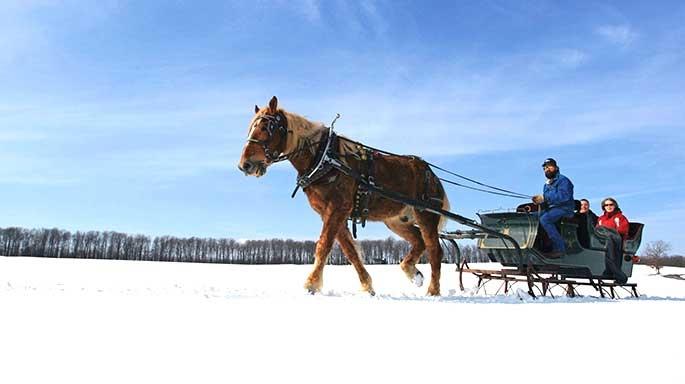 Winter Wonderland in Western Maryland